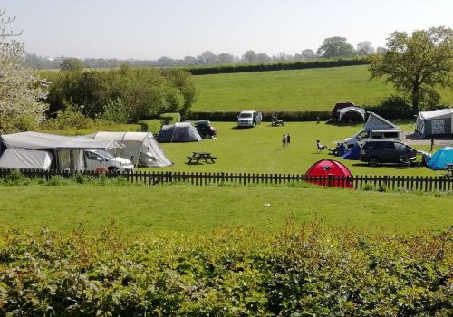 Enclosed dog paddock next to campsite